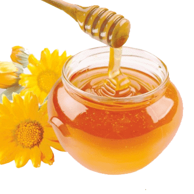Wild-Honey-Small.png